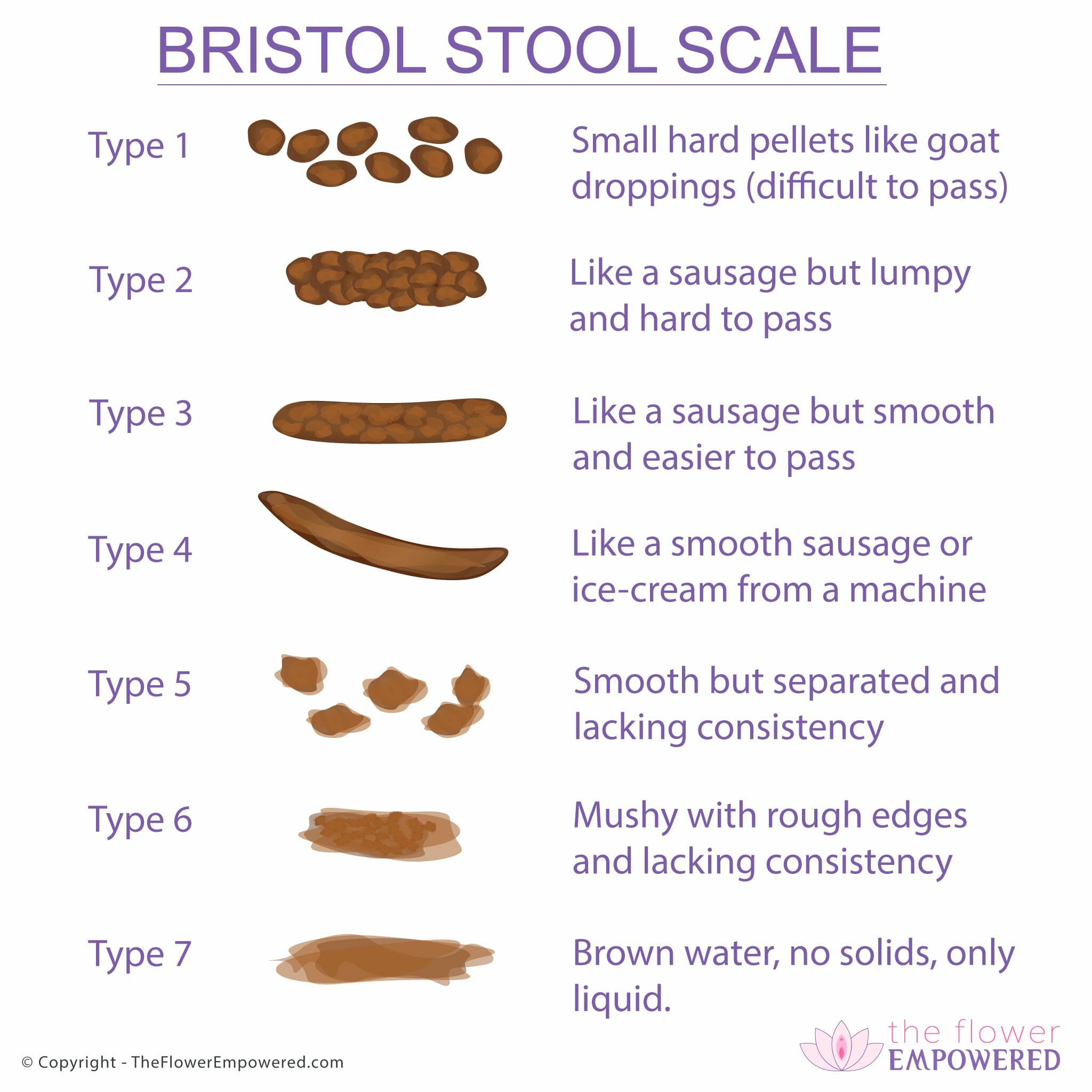 Bristol Stool Scale